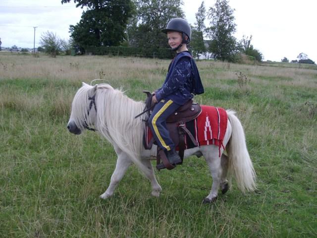 9-13 åriga barn - Ridning - Ridsport iFokus 961ffec61accc