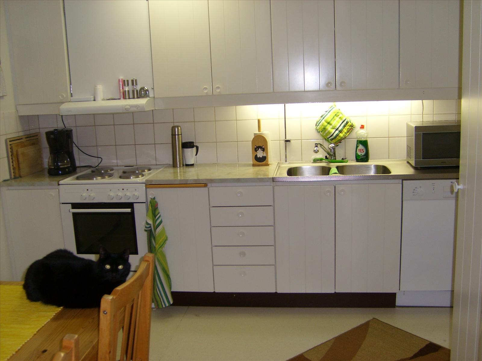 Hur ser ditt kök ut? - 12. Inredning och trädgård - Miljonär ...