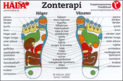 mænds erogene zoner før menstruation