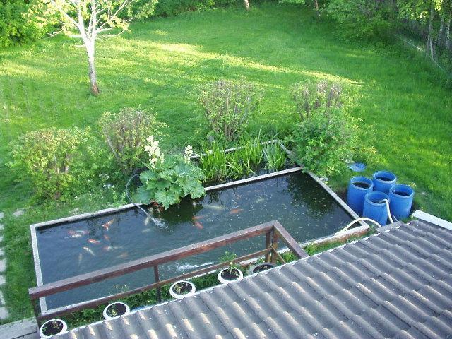 Trädgårdsdammar! - Vatten i trädgården och vattenväxter - Trädgård ...