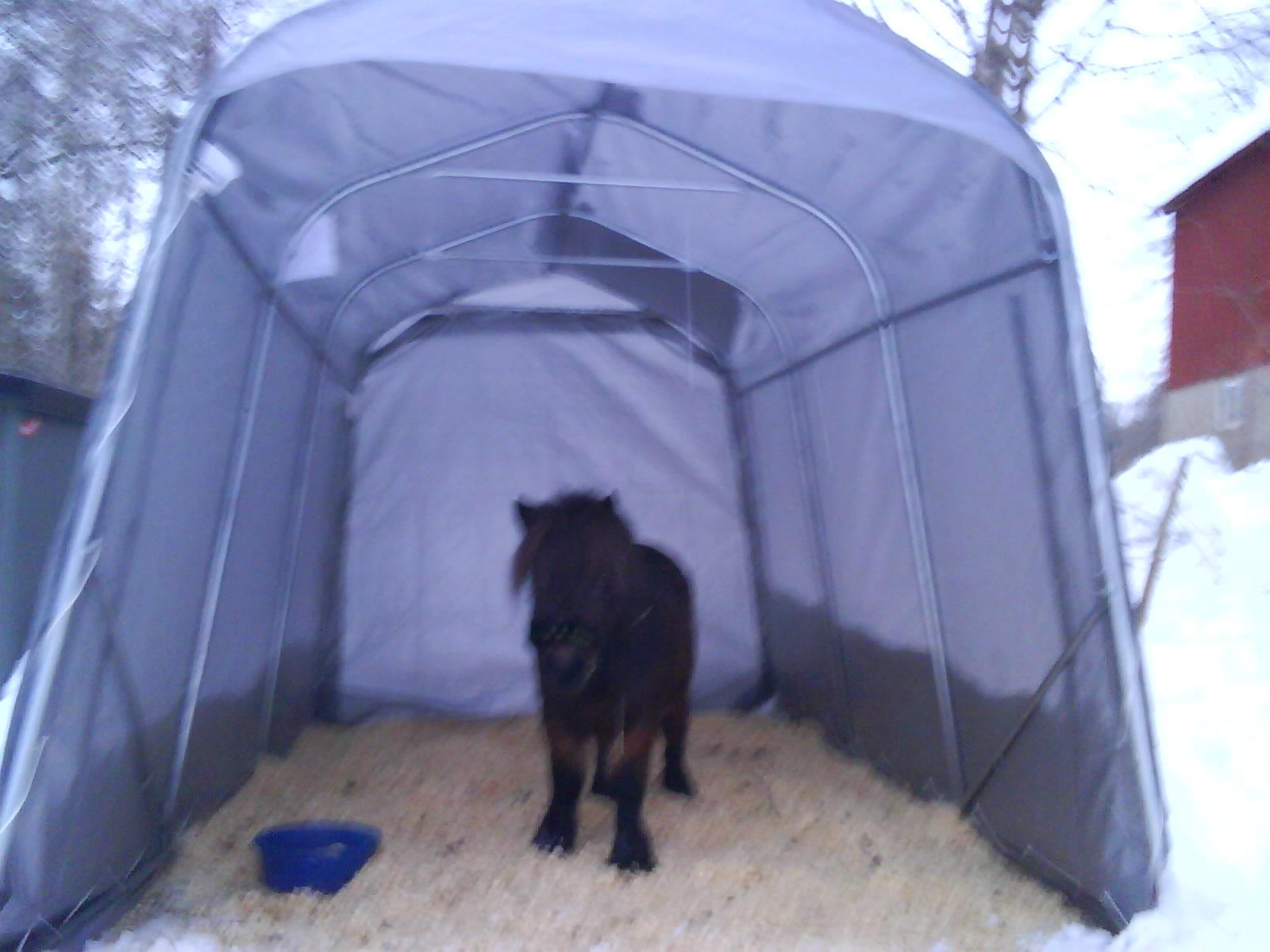 Vindskydd häst tält