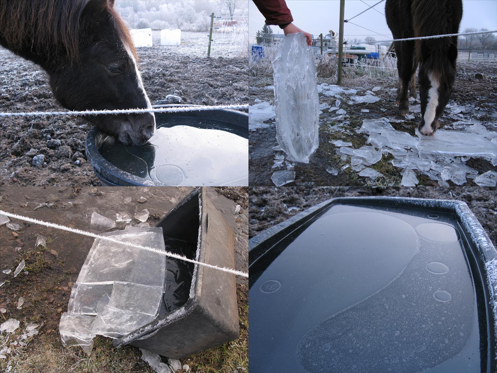 Isfritt vatten i hagen på vintern
