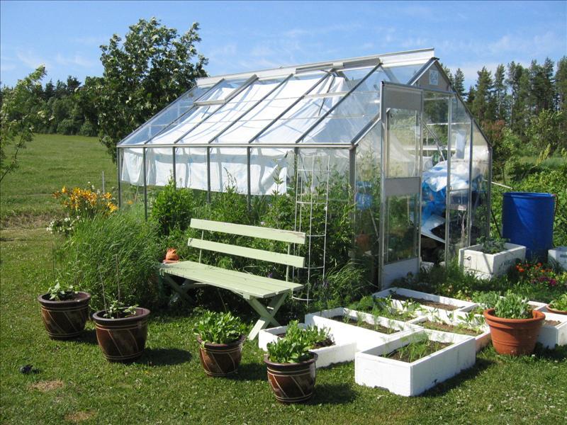 Växthus Odla : Trädgårdshäxor är vi väl allihopa Övrigt alt behandlingar