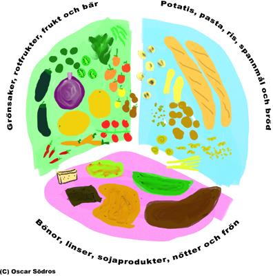 N 228 Ring Och Kostcirkeln Information Amp Fakta Vegan Ifokus