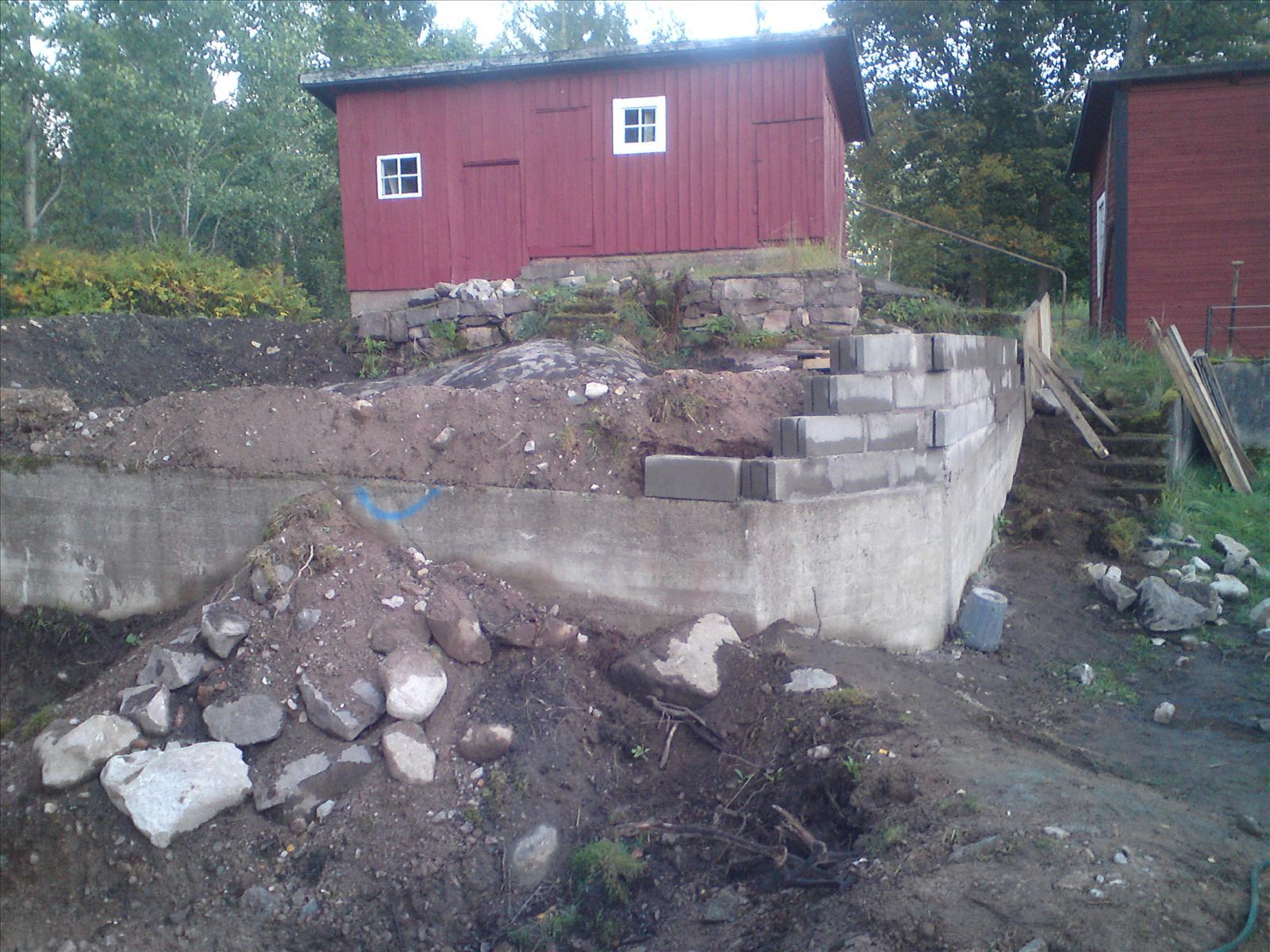 Mitt dammbygge   vatten i trädgården och vattenväxter   trädgård ...