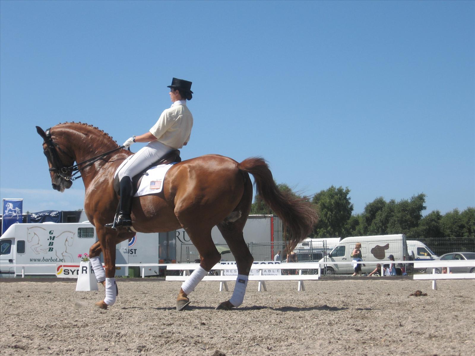 Tävling hästhoppning
